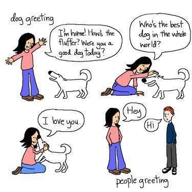 people greeting vs dog greeting