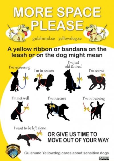 yellow ribbon project