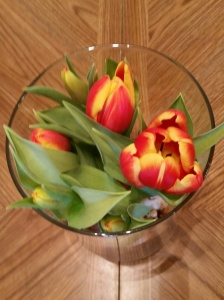 tulips2015